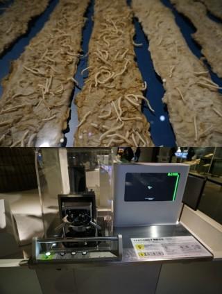 최근 화제가 된 고래 기생충(위)/ 하야부사가 가져온 소행성 암석 표본을 현미경을 통해 볼 수 있도록 해놓았다. 현미경을 통해 보는 모습은 우측 모니터를 통해서도 볼 수 있도록 했다. - 도쿄=이우상 기자 idol@donga.com 제공